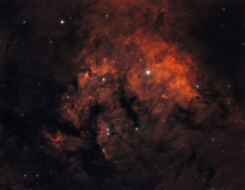 NGC 7822 Bicolor Qhy 695A